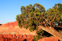 2005 09-25 Capitol Reef NP near Sunset_04.jpg