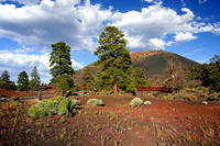 2006 08-30 Sunset Crater Park